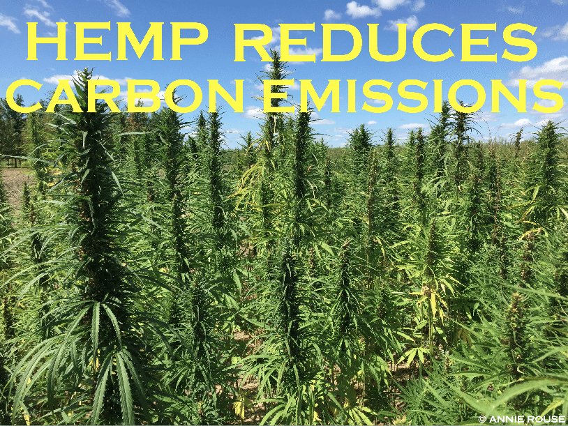 Hemp Reduces Carbon Emissions