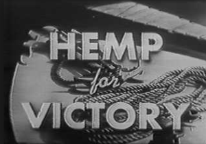 Aftermath of Marijuana Tax Act Hemp for Victory