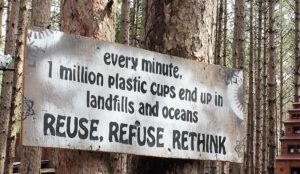 Sustainability at Electric Forest